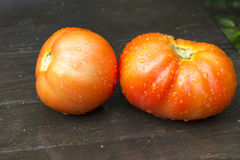 Röda mogna tomater i regndroppar ligger på en trätabell Royaltyfri Foto
