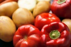 Röda mogna tomater, röda söta peppar och potatisknölar i defocus arkivfoton