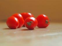 Röda mogna tomater som är ordnade på träbakgrund Royaltyfri Bild