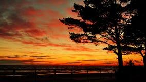 Röda moln efter solnedgång royaltyfria foton