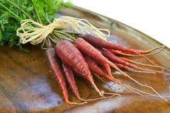 röda morötter Fotografering för Bildbyråer