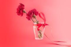 Röda nejlikor i vas med bandet på en röd bakgrund Fotografering för Bildbyråer
