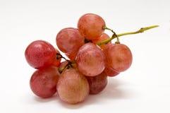 röda nya druvor Arkivbild