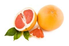 röda nya grapefrukter Royaltyfri Fotografi