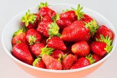 Röda nya jordgubbar i en bunke som isoleras på vit bakgrund Slapp fokus Royaltyfria Foton