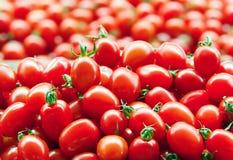 Röda nya mogna tomater stänger sig upp i supermarket Grönsakskörd royaltyfria bilder