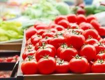Röda nya mogna tomater stänger sig upp i supermarket Grönsakskörd arkivbilder