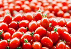 Röda nya mogna tomater stänger sig upp och gör grön söta spanska peppar i bakgrunden på marknaden arkivfoto