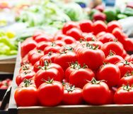 Röda nya mogna tomater stänger sig upp och gör grön söta spanska peppar i bakgrunden på marknaden Royaltyfri Foto