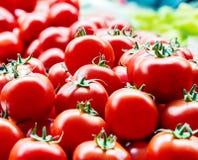 Röda nya mogna tomater stänger sig upp och gör grön söta spanska peppar i bakgrunden på marknaden arkivbilder