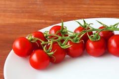Röda nya saftiga tomater på en platta Royaltyfria Foton