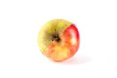 Röda och gröna äpplen Fotografering för Bildbyråer