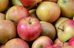 Röda och gröna äpplen staplar, sunt, och ny mat, för bantar och strikt vegetarian Bakgrunds- och naturmodell arkivfoto