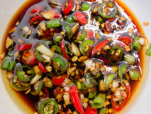 Röda och gröna chili Arkivbild