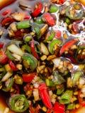 Röda och gröna chili Royaltyfria Bilder