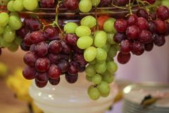 Röda och gröna druvor i en bunke royaltyfri fotografi