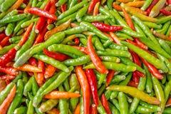 Röda och gröna varma peppar Royaltyfri Bild