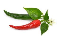 Röda och gröna varma peppar med bladet Arkivfoto
