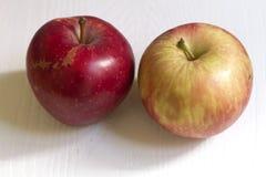 Röda och gula äpplen för skönhet Royaltyfri Bild