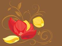 Röda och gula roskronblad på den dekorativa bakgrunden Royaltyfri Fotografi