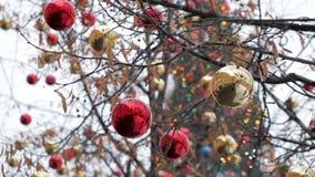 Röda och guld- xmas-bollar på träd arkivfilmer