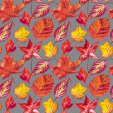Röda och orange Autumn Leaves Background Sömlös modellillustration för vattenfärg Arkivfoto