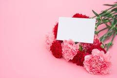 Röda och rosa nejlikor med ett tomt kort Royaltyfri Bild