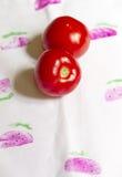 Röda och saftiga tomater Fotografering för Bildbyråer