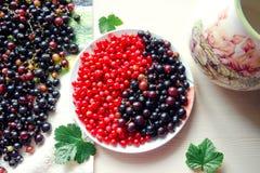 Röda och svarta vinbär för tappning Begreppet av Yin och Yan fotografering för bildbyråer