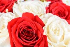 Röda och vita rosor som gifta sig buketten Royaltyfria Bilder