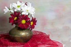 Röda och vita tusenskönor i en kopparvas Arkivbild