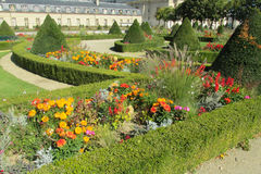 Röda, orange, lila- och gulingblommor i en härlig trädgård Arkivfoton