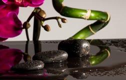 Röda orchids Arkivfoton