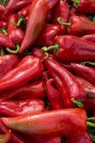 röda organiska peppar för gräs Arkivfoton