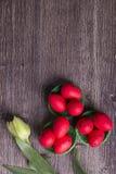 Röda påskägg på grönt rede och tulpan arkivbilder
