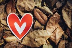 Röda pappers- hjärtor på jordningen Royaltyfri Bild