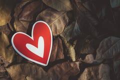 Röda pappers- hjärtor på jordningen Fotografering för Bildbyråer