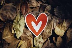 Röda pappers- hjärtor på jordningen Royaltyfri Fotografi