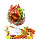 Röda peppar i ett exponeringsglas Royaltyfria Foton
