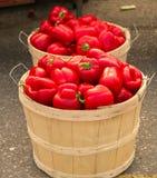 Röda peppar i korgar Arkivfoto