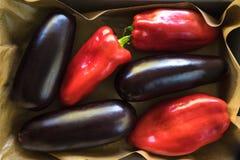 Röda peppar och mörka violetta aubergine på papperet på magasinet arkivbilder