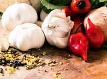 Röda peppar och vitlök Royaltyfri Foto