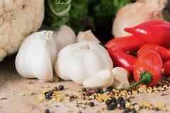 Röda peppar och vitlök Fotografering för Bildbyråer