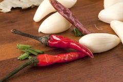 Röda peppar och vitlökkryddnejlikor Fotografering för Bildbyråer