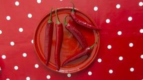 Röda peppar på en polkadockabakgrund Arkivbild