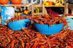 Röda peppar på Sanen Juan Chamula marknadsför, Chiapas, Mexico fotografering för bildbyråer