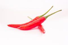 Röda peppar, peppar på vit backgroud Fotografering för Bildbyråer