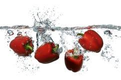 Röda peppar som plaskar in i nytt rent vatten royaltyfri bild