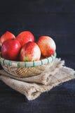 röda persikor Royaltyfria Bilder