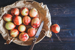 röda persikor Royaltyfri Foto